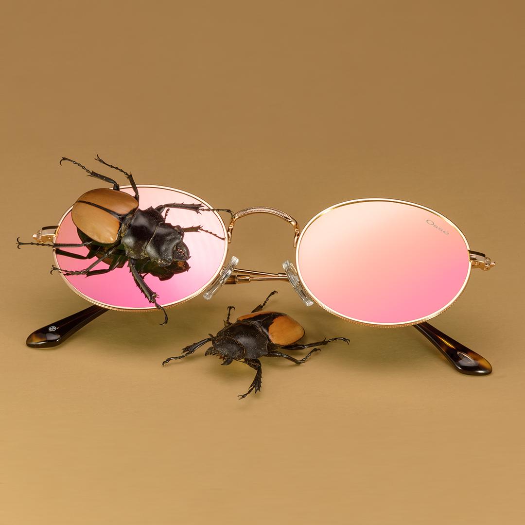 Bug_6