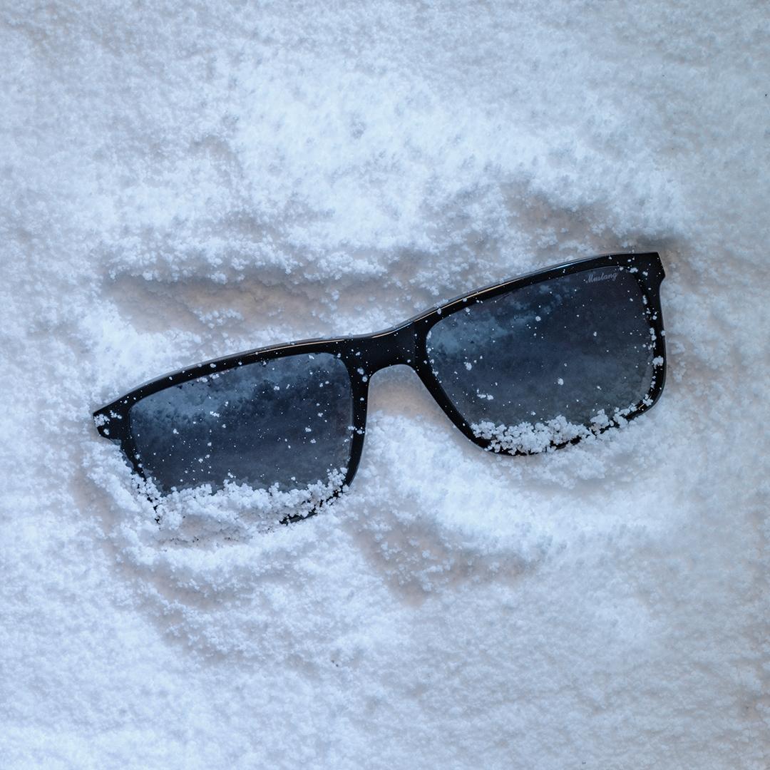 Mustang_Snow